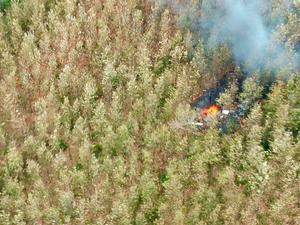 Smoke rises from wreckage after a plane crashed in the mountainous area of Punta Islita, in the province of Guanacaste, in Costa Rica December 31, 2017 in this picture obtained from social media.  Ministerio de Seguridad Publica de Costa Rica/via REUTERS