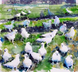 Cockatoos, Royal  Botanical Gardens, Sydney by John Short