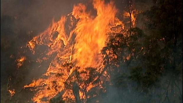 Burning bush: Seen from above, fire takes a grip in Bundoora, Victoria. Photo: Australian Broadcasting Corporation, Channel 7, Channel 9 via AP