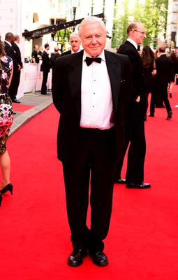 Sir David Attenborough arrives for the House of Fraser British Academy of Television Awards at the Theatre Royal, Drury Lane in London. PRESS ASSOCIATION Photo. Picture date: Sunday May 10, 2015. See PA story SHOWBIZ Bafta. Photo credit should read: Ian West/PA Wire