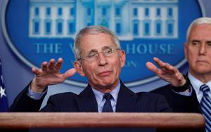 Optimism: Dr Anthony Fauci said the coming week would be shocking but hoped it would be the peak. Photo: REUTERS/Tom Brenner