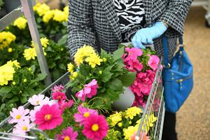 Flowers are seen in a trolley at Polhill Garden Centre, in Sevenoaks, England. Photo: REUTERS/Dylan Martinez