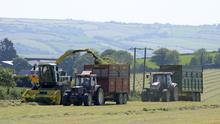 Perfect silage conditions at Dunderrow Kinsale Co Cork. Picture Denis Boyle