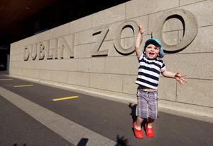 Jumping for joy: Matthew McClelland, aged two and a half from Castleknock, cannot contain his excitement after Dublin Zoo reopened its gates. PHOTO: STEVE HUMPHREYS