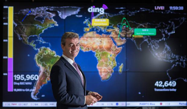 Ambition: Ding CEO Mark Roden feels the company can move into new markets as it looks to expand. Photo: David Conachy.