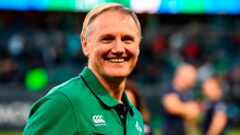 'If the Kiwis were in any doubt, they now know Joe Schmidt is the best coach in the world.' Photo by Brendan Moran/Sportsfile