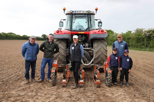 Family affair: Anne-Marie Feighery with her father Billy, brother William and brother Alan and his sons Billy and Dan sowing beetroot. Photo: Alf Harvey