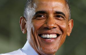 U.S. President Barack Obama can win the next round of Senate and House of Representatives seats for the Democratic Party (REUTERS/Kevin Lamarque)