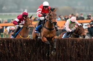 Coneygree's Gold Cup win was more than just a victory for a small operator, it was a resounding triumph for the enduring impossible dream