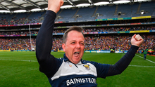 Wexford manager Davy Fitzgerald has been praised by Brendan Cummins