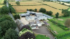 Model farm: The 88ac property is located at Coolnahorna, 3km from Enniscorthy, and is on the market at €900,000