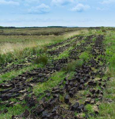 Turf laid out to dry in Co Clare. Photo: Getty