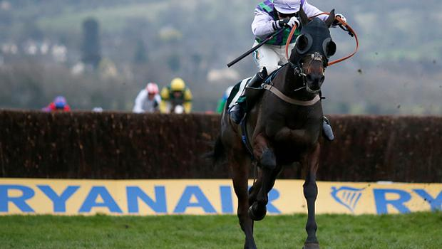 CHELTENHAM, ENGLAND - MARCH 16: Gina Andrews riding Domesday Book clear the last to win The Fulke Walwyn Kim Muir Challenge Cup Amateur Ridersâ Handicap Steeple Chase during St Patrick's Thursday on day three of the festival meeting at Cheltenham racecourse on March 16, 2017 in Cheltenham, England. (Photo by Alan Crowhurst/Getty Images)