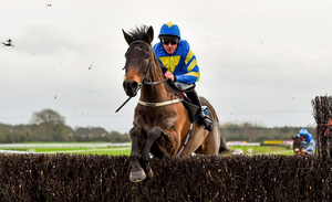 Mallowney, with Davy Russell up, jumps the last on their way to winning at Fairyhouse in January