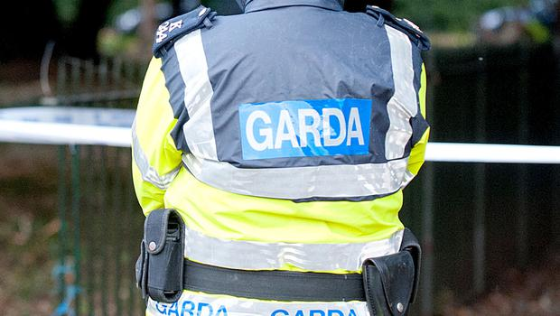Gardai investigate after shots fired at car overnight