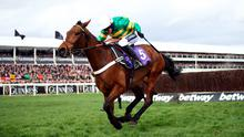 Standout: Barry Geraghty's ride on Champ in the RSA Insurance Novices' Chase on day two of the Festival was something to behold. Photo: Tim Goode/PA Wire.