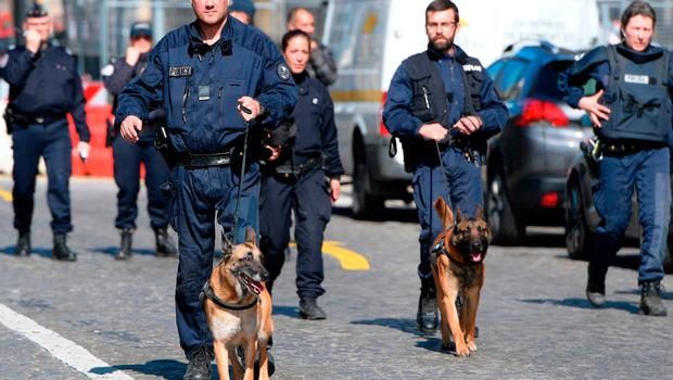 French Police officers arrive with sniffer dogs at the scene of the Paris offices of the International Monetary Fund (IMF) on March 16, 2017 in Paris, after a letter bomb exploded in the premises.  / AFP PHOTO / Christophe ARCHAMBAULTCHRISTOPHE ARCHAMBAULT/AFP/Getty Images
