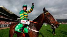 Jockey Noel Fehily on board Buveur D'air celebrates winning the 15:30 Stan James Champion Hurdle Challenge Trophy during Champion Day of the 2017 Cheltenham Festival at Cheltenham Racecourse. PRESS ASSOCIATION Photo. Picture date: Tuesday March 14, 2017. See PA story RACING Cheltenham. Photo credit should read: David Davies/PA Wire. RESTRICTIONS: Editorial Use only, commercial use is subject to prior permission from The Jockey Club/Cheltenham Racecourse