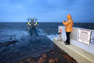 Ruff seas: A walker and their dog at the  Blackrock Diving tower near the promenade in Galway as Storm Lorenzo approached. Photo: Frank McGrath
