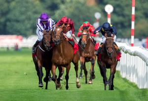 Simple Verse (centre) hampers Bondi Beach up the straight in the St Leger on Saturday