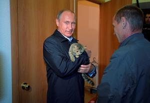 Russian President Vladimir Putin holds a cat while inspecting reconstruction of houses for people who suffered from wildfires in the village of Krasnopolye at the Siberian Khakasiya region. Photo: Reuters