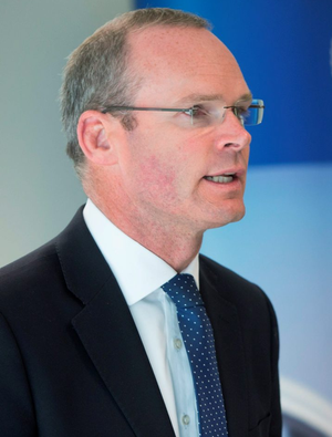 'Defence Minister Simon Coveney's pledge to be 'generous but not naïve' by accepting 1,000 migrants does not reflect the level of concern nationally'