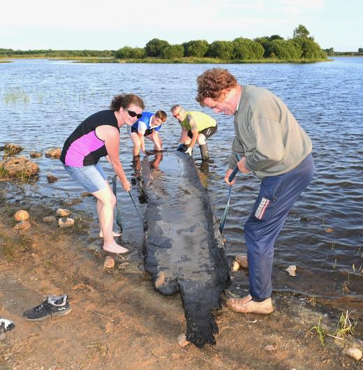Ancient treasure: Cathal McDonagh (12) and his family help to retrieve the ancient longboat he found in the inland lake