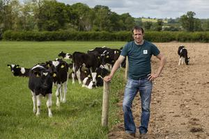 Business brain: Dara Walton runs a dairy-calf-to-beef enterprise alongside his suckler herd. Photo: John D Kelly