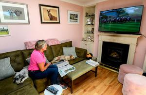 Remote control: Due to Covid-19 guidelines, trainer Jessica Harrington watches the racing at Naas from the comfort of her own living room with her dog Willow relaxing on the couch. Photo: Ramsey Cardy/Sportsfile
