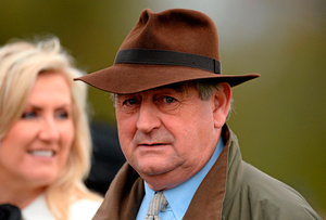Trainer Noel Meade Picture: Oliver McVeigh / SPORTSFILE