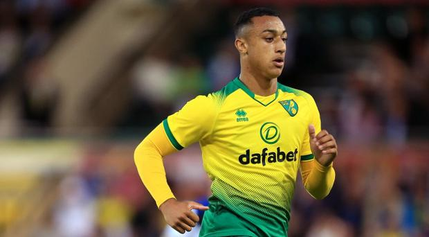 'A natural born goalscorer' - Irish youngster Adam Idah set to start for Norwich after tribute from his manager