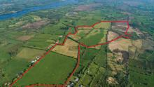 The 136ac grass holding is described as a 'fine fattening farm' — it is located near Mohill and has a guide price of €6,500 per acre