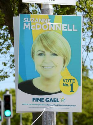 Suzanne McDonnell's poster