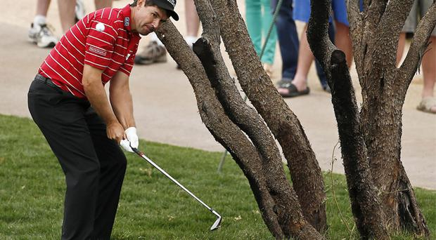 04 February, 2013: Padraig Harrington chips out from under a tree with a left-handed shot during the final round of the Waste Management Phoenix Open golf tournament. Photo: AP