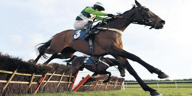 Rock On Ruby jumps the last in front at Doncaster as Darlan, under Tony McCoy, takes a fatal fall
