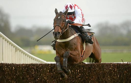 Flemenstar has Gold Cup stamina to prove