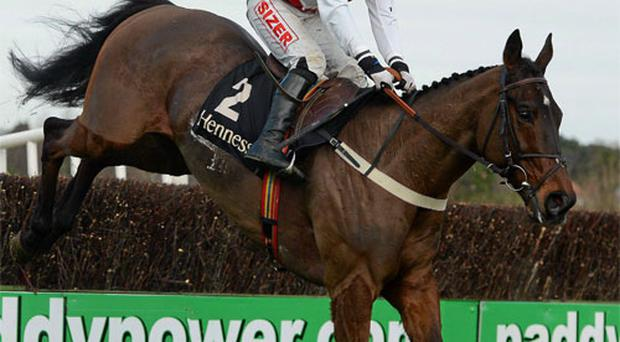 Flemenstar, with Andrew Lynch up, in action during the Hennessy Gold Cup
