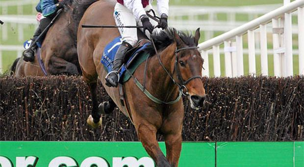 Seabass, with Katie Walsh, clears the last on their way to winning The Leopardstown Handicap Steeplechase