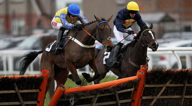 Hot favourite Peddlers Cross, under Jason Maguire, makes a mistake on the way to victory at Musselburgh