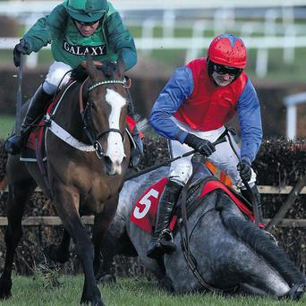 Utopie Des Bordes, with Barry Geraghty up, goes clear in the Jane Seymour Mares' Novices Hurdle at Sandown as Ruby Walsh parts company with Twigline