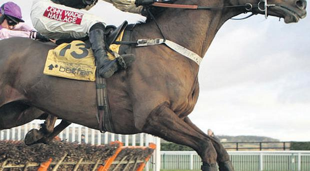 Trainer reaction to the weights was interesting. Paul Nicholls cancelled all other engagements for Tidal Bay