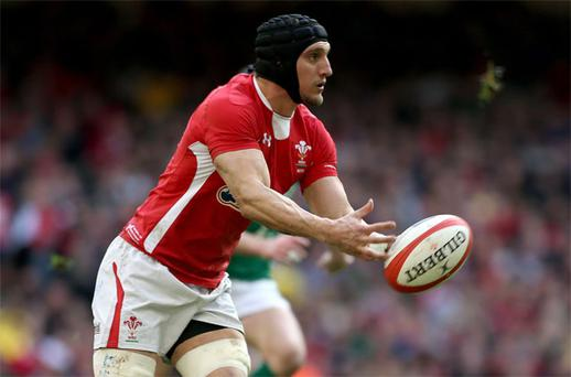 Sam Warburton in action for Wales