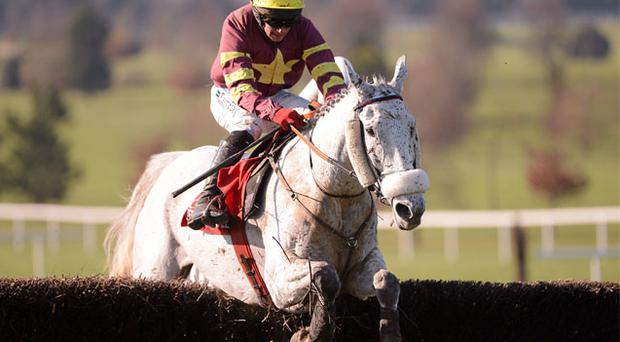 Chicago Grey and Davy Condon safely negotiate the final fence on the way to capturing the Red Mills Chase at Navan