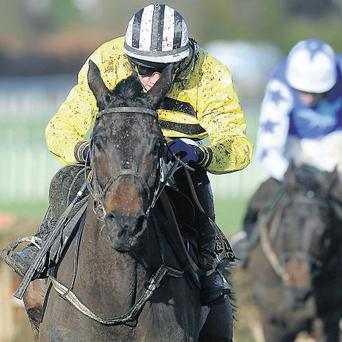 Glens Melody and jockey Paul Townend can put Willie Mullins in the record books