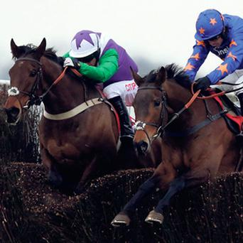 Opening Batsman and Rolling Aces clear the last in Racing Plus Chase at Kempton