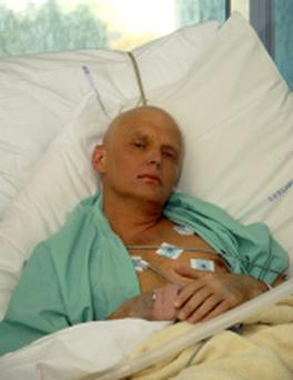 Alexander Litvinenko is seen lying in his hospital bed in this photograph REUTERS/Handout