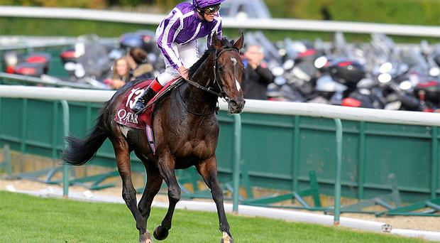 Frankie Dettori onboard Camelot after defeat in the Arc de Triomphe last October