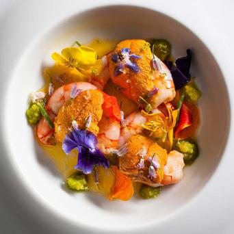 Jean-Georges' Maine ruby shrimp and sea urchin, green chili and lime.