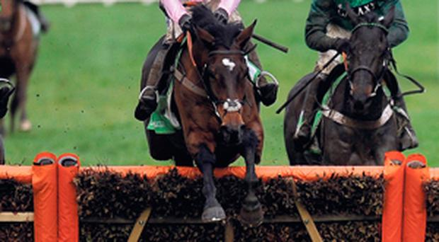 Ruby Walsh and Zarkandar (centre) clear the last to win the StanJames.com International at Cheltenham last December