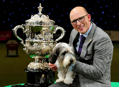 Petit Basset Griffon Vendeen named Jilly, with owner Gavin Robertson from Wallingford, Oxfordshire, after winning Best in Show at Crufts